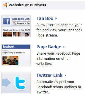 Facebook Website or Business