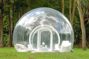 Live in a Bubble