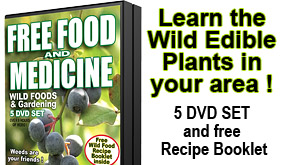 Free Food & Medicine Edible Plant Guide eBook