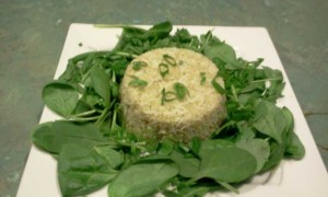 Quinoa, Basmati Rice, Baby Spinach Leaves, Rocket, Spring Onion