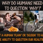 Why do humans need to question the 'why'?