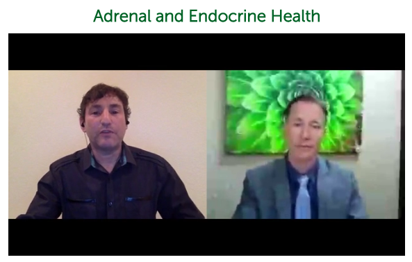 Adrenal and Endocrine Health ~ Dr. Alan Christianson [Notes]