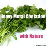 heavy-metal-chelation-nature