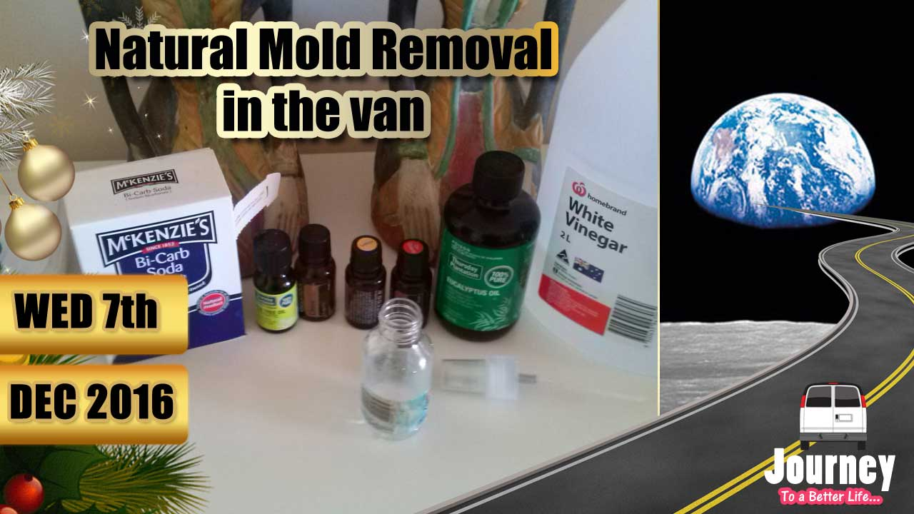 Natural Mold Removal in the Van