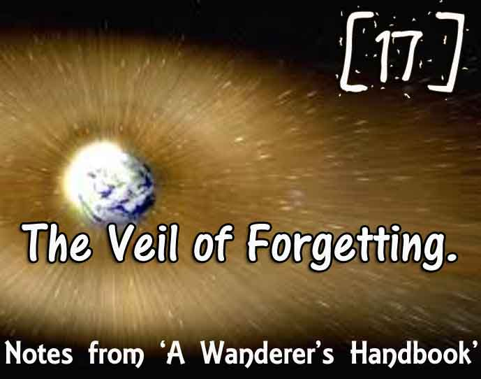 [17] – The Veil of Forgetting – Journey to a Better Life