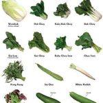 Fruits, Vegetables, Nuts in Season in Victoria